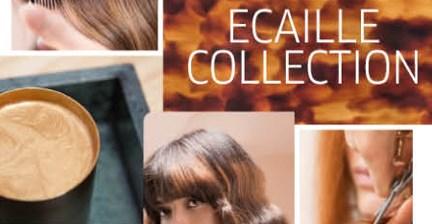 discover-ecaille-intro-pic.jpg