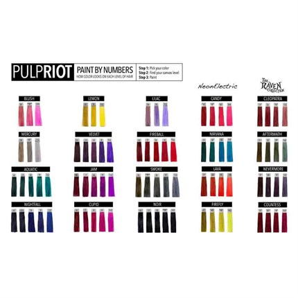 Pulp Riot Paint By Numbers A4 Shade Chart