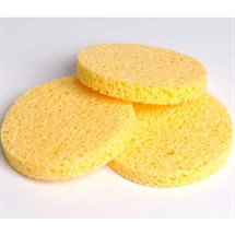 Capital Mask Sponges Pk14 - Small