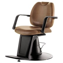 Salon Ambience Emilio Barber Chair