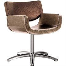 Salon Ambience Quadro Swivel Chair + Five Star Base