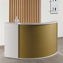 Salon Ambience Form Reception Desk