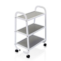 REM Arc Equipment Trolley