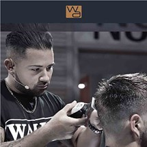Classic Mens Grooming with Wahl